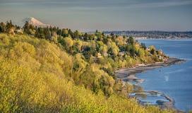 MT Regenachtiger boven Gouden Gebladerte en Puget Sound stock fotografie