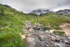 Mt regnerischer Stockfoto