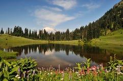 Mt. Regnerischer und Tipsoo See lizenzfreie stockbilder