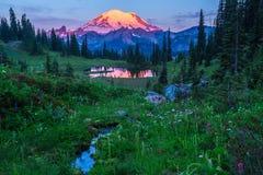 Mt Regnerischer, Washington State lizenzfreie stockbilder