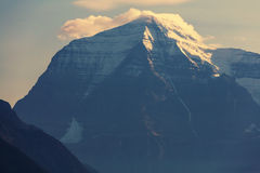 Mt robson Photo libre de droits