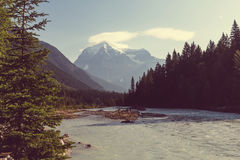 Mt robson Image stock