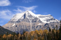 Mt. Robson Fotos de Stock Royalty Free