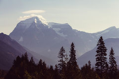 Mt robson Photos stock