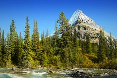 Mt Robson - Mount Robson Provincial Park, Canadian Rockies Royalty Free Stock Photo