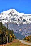 Mt. Robson royalty free stock images