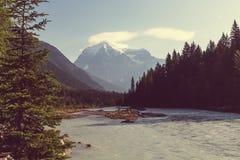 Mt.Robson Stock Image