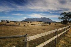 Mt Roland Lookout, Tasmânia Kentish ocidental imagem de stock