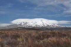 Mt Ruapehu от дороги пустыни Стоковые Фото