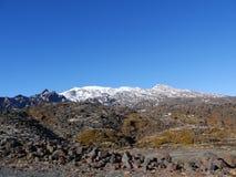 Mt Ruapehu 免版税库存图片