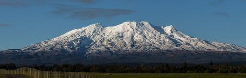 Mt Ruapehu i vinter Royaltyfri Bild