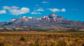 Mt Ruapehu Summer Royalty Free Stock Photos