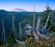 Mt Rue Helen WA de Mt Photo stock