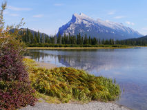 Mt. Rundle provides majestic background. The steep slopes of Mt. Rundle in Banff Alberta towers in the background and is reflected in placid waters of Vermillion royalty free stock image