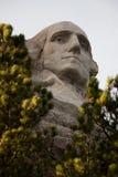 Mt Rushmore Вашингтон между деревьями стоковое изображение