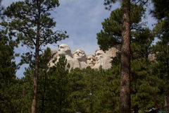 Mt Rushmore. Sculptures framed by trees Stock Images