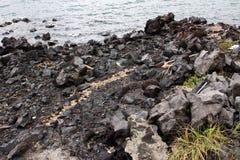 从Mt Sakurajim的熔岩 免版税图库摄影