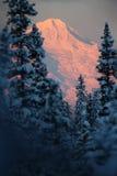 Mt. salida del sol del invierno del Iliamna Foto de archivo