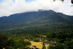 Mt. Santubong, Damai, Borneo, Malaysia Royalty Free Stock Photo