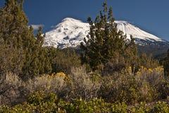 Mt Shasta加利福尼亚 库存照片
