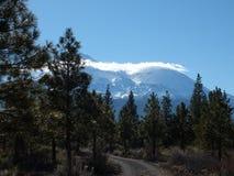 Mt Shasta的西边 库存照片