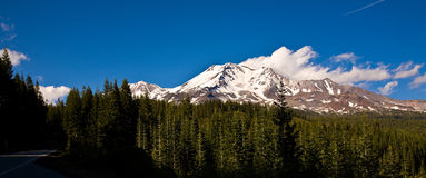 Mt. Shasta royalty free stock photos