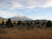 mt shasta Obrazy Royalty Free