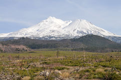 Mt. Shasta Royalty Free Stock Photography