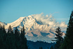 Mt shasta Стоковое Фото