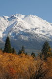 Mt. Shasta, CA Royalty Free Stock Images