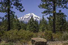 Mt Shasta do sudeste foto de stock royalty free