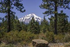 Mt Shasta från sydost royaltyfri foto