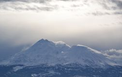Mt Shasta in grey royalty free stock photo