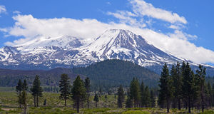 Mt Shasta. This is Mt Shasta, located in northern California it speaks for its self Royalty Free Stock Image