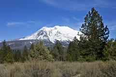 Mt. Shasta royalty free stock photography