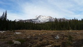 Mt. Shasta royalty free stock images