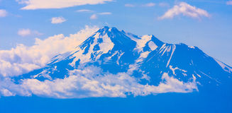 Mt. Shasta during Summer Stock Image