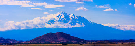 Mt. Shasta during Summer Royalty Free Stock Image