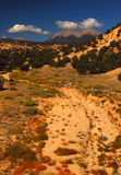 Mt. Shavano. Dry river bed in the semi desert area of Buena Vista royalty free stock photos