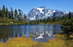 Mt Shuksan反射,华盛顿 免版税库存图片