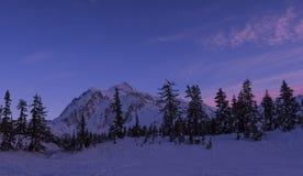Mt Shuksan在日落的冬天 免版税库存照片
