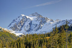 Mt Shuksan Royaltyfria Foton