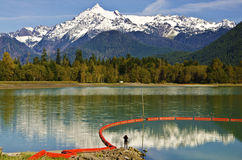 Mt Shuksan back view from baker Lake with Reflection Stock Image
