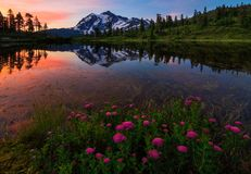 Mt Shuksan bild sjö, Washington State Royaltyfria Bilder