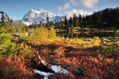 Mt. Shuksan en het Meer van het Beeld in de Herfst royalty-vrije stock afbeelding