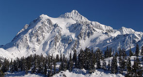 Mt Shuksan Panorama. Panorama of Mt Shuksan in the winter from the Mt Baker Ski Area stock photos