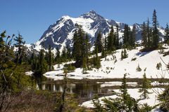 Mt Shuksan, parc national de cascade du nord à Washington image stock