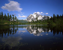 Mt. Shuksan & Picture Lake. Mt. Shuksan and trees reflecting in Picture Lake which is located in Washington State royalty free stock photo