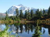 Mt Shuksan reflection. Mt Shuksan reflecting in a lake stock photo