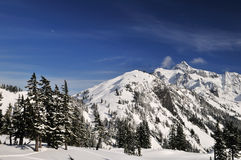 Mt. shuksan with snow in winter Royalty Free Stock Image
